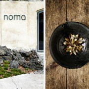 Les jeunes disciples du Noma à Copenhague partent à la conquête du monde