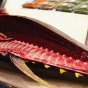 Pour la première fois, le Japon revoit ses quotas de pêche de thon à la baisse