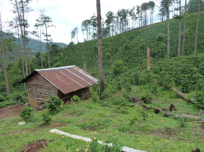 La cabane de Pierre Morère dans les montagnes