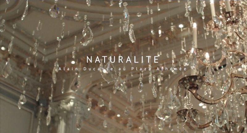 naturalness-boxV-1