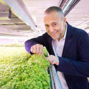 Michel Roux Jr se lance dans la première ferme underground, dans un ancien bunker de Londres