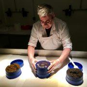 La Manufacture de caviar Kaviari – L'histoire recommence ici !