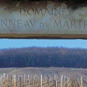 Les vignes de Bourgogne au coeur des spéculations financières