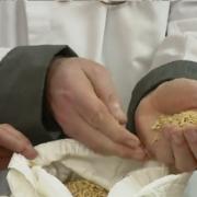 Alexandre Reis, l'homme qui fait pousser du riz en Bretagne !…