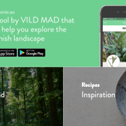Vild Mad, l'application de René Redzepi pour vous éduquer au aliments de la nature environnante !