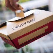 Trois professionnels de la restauration donnent leur avis sur le » Doggy Bag «