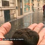 La truffe d'Espagne s'arrache à prix d'or … France 2 est allée enquêter