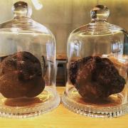Truffes Noires – elles sont indispensables au menu de la Saint Sylvestre