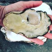 Les impressionnantes huîtres Steaks du chef René Redzepi
