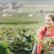 Le monde du vin se féminise