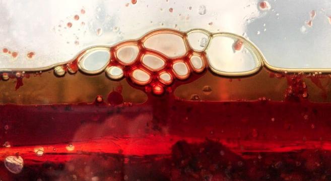 Rene redzepi 10 ans de travail sur la fermentation pour for Tout prend son sens dans le miroir