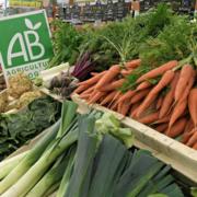 L'UE pousse pour la conversion des agriculteurs européens vers le bio