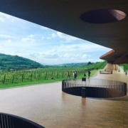 ŒNOtourisme – Les 7 plus belles routes du vin à visiter en Europe
