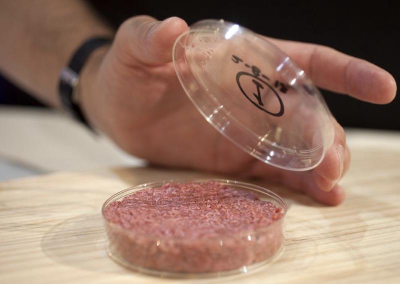 marché de la viande synthétique