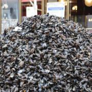 Lille – La Grande Braderie de septembre – quand les moules posent plus de problèmes que les frites !