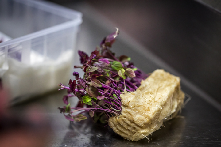 actualites chefs gastronomie