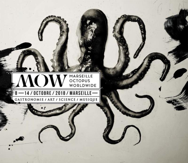 marseille octopus worldwide