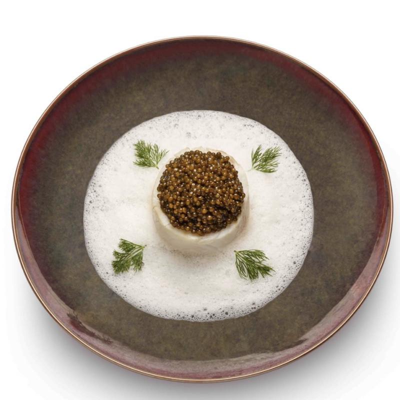 cuisine gastronomique mathieu pacaud