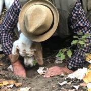 F&S est parti à la découverte de la chasse aux truffes blanches d'Alba avec Natale Romagnolo