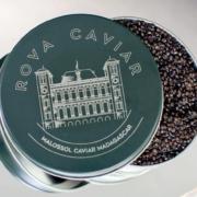 Le tout premier caviar africain est malgache, vous pourrez le découvrir au Sirha