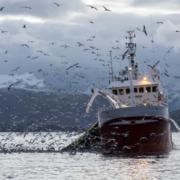 Économie de la mer et Enjeux de la pêche en Europe… pour une prise de conscience commune