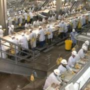 Dans la région de New York les travailleurs des usines de découpe de viande et volaille particulièrement touchés par le Covid