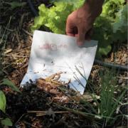 Fibre écologique au Vieux Puits du chef Gilles Goujon  – Le Menu à Planter