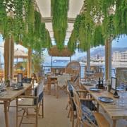 Monaco – Riviera – Les terrasses en majesté