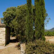 Wine-trip «Tous en Terrasses du Larzac» les 8,9 & 10 octobre à Montpellier