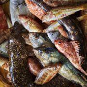 Petits et gros poissons, coquillages & crustacés à déguster ici et ailleurs, à Paris & Marseille