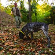 Langhe Monferrato Roero en ligne – le district piémontais qui produit la truffe d'Alba, classé au patrimoine de l'Unesco se raconte en direct sur Facebook