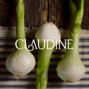 Julien Royer continue son développement avec l'ouverture prochaine du restaurant «Claudine» à Singapour