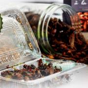 Ynsect – le premier centre de production d'insectes destinés à la consommation s'installe à Dole