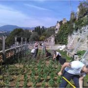 Mauro Colagreco en son jardin – » Chaque jour au Mirazur nous prenons soin de notre jardin et sommes reconnaissants des trésors qu'il nous livre » #journeemondialedelaterre