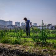 Les nouveaux terriens d'Île-de-France proposent des solutions face à la crise environnementale