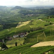 La «Global Conference on Wine Tourism» se déroulera en Italie en 2021