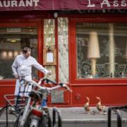 Le chef David Rathgeber sur les marchés de Paris … alors si l'on causait saisonnalité ? – Vidéo