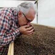 Suivez Alain Ducasse au Panama aux sources des meilleurs cafés