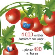 3 Français sur 4 trouvent avec raison que les tomates n'ont pas de goût