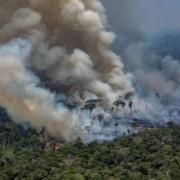 amazonie incendie