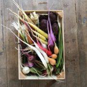 Dalloyau lance ses petits paniers de légumes avec le maraîcher Eric Roy et propose des recettes