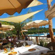 Le Jardin Tropezina – Une plage/restaurant au coeur de la nature – le chef Arnaud Nicolas en cuisine