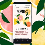 Le média en ligne «Pomelo» du journaliste Ezéchiel Zérah change de formule et devient payant