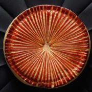Epiphanie – La galette des rois de la Brasserie Lazare revisitée par le Chef Eric Frechon et le Chef Pâtissier Christophe Felder