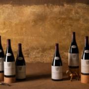 «The Provenance» la prochaine vente physique de Baghera/wines, le 5 décembre à Genève.